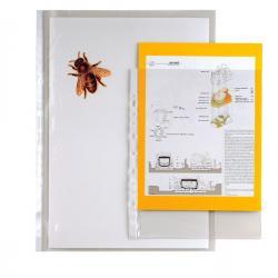 Buste forate Ercole - 42x30 cm (album) - trasparente - Sei Rota - conf. 10 pezzi