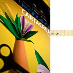 Cartoncino CartaCrea - 35x50cm - 220gr - onice 117 - Fabriano - blister 10 fogli