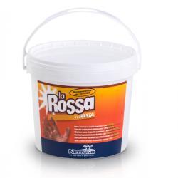 Pasta lavamani La Rossa - Nettuno - secchiello da 5 lt