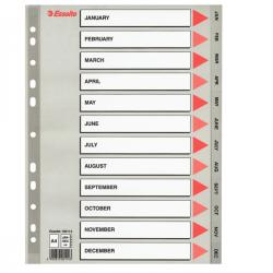 Separatore mensile Gen/Dic - PPL - A4 - grigio - Esselte