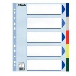 Separatore - 5 tasti colorati - PP - A4 maxi - 24,5x29,7 cm - multicolore - Esselte