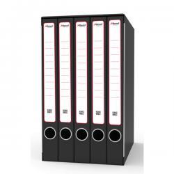 Gruppo registratori Quintetto - con 5 cartelle 3 lembi - 23x32 cm - dorso 23 cm - grigio - Rexel